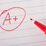 trivia questions, online quiz, pass, test, millennial generation, test, american,