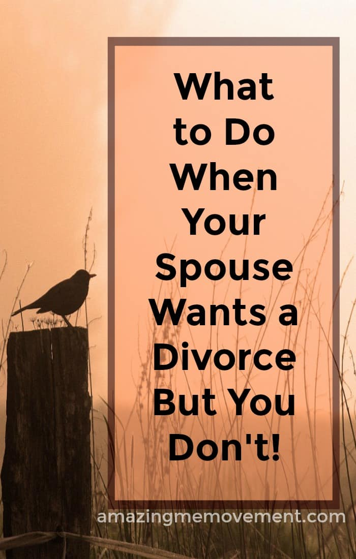 What to do when your spouse wants a divorce but you don't. It surely is a difficult time. This blog will help! #divorce #grief #howtobehappy #lifechanging #howtoletgo #movingon #relationships #inspirationalblogs #lifelessons