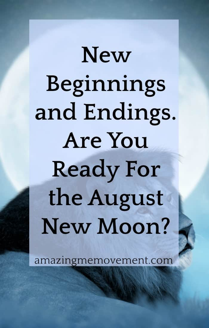 Are you ready for the new moon in August? Prepare for abrupt endings and new beginnings. How's your self confidence these days? Time to take a hard close look at it and boost it. #lifechanging #howtochangeyourlife #confidence #selfconfidence #attitude #newbeginnings #lifelessons #newmoon #creativity #newmoonrituals #manifestations #messages #intentions #mooninleo